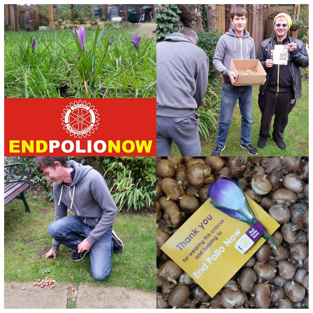 EndPolioNow